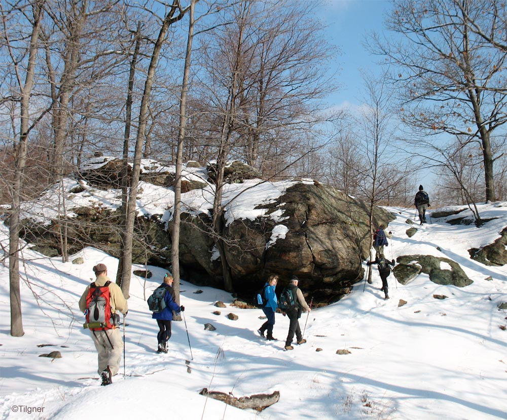 A Thursday Hike On the Blue Disk Trail In Harriman